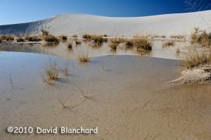 Reflections in the shallow lakes produced by heavy rainfall across White Sands National Monument.