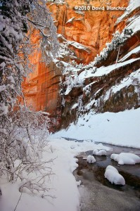A winter storm brings substantial snow and icy streams to the West Fork Oak Creek.