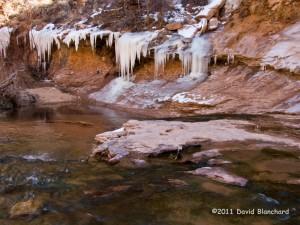 Frozen streamside in Negro Bill Canyon near Moab, Utah.