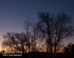 Crescent moon and Venus in morning twilight.