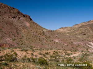 Mountain biking trails in Bootleg Canyon: West Leg.