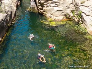 Swimming through the narrows in Wet Beaver Creek.