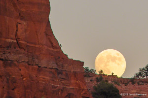 Moon rise above Cathedral Rock.