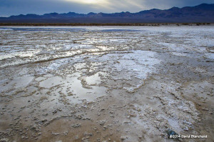 Salt flats in the south end of the valley.