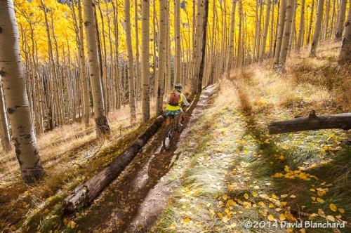 Inner Basin Trail.