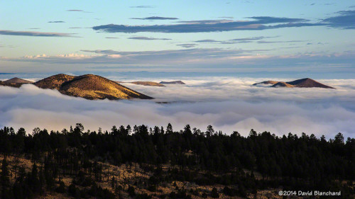 A sea of fog across northern Arizona at sunrise.