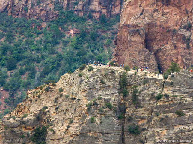 Looking down on Angels Landing from Observation Point.