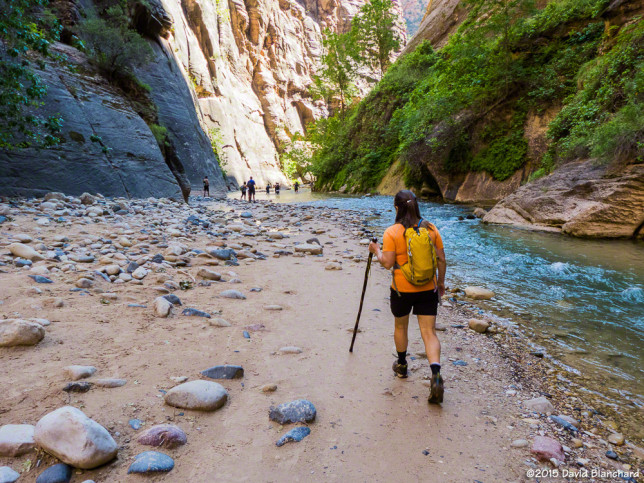 The beginning of the Zion river walk.
