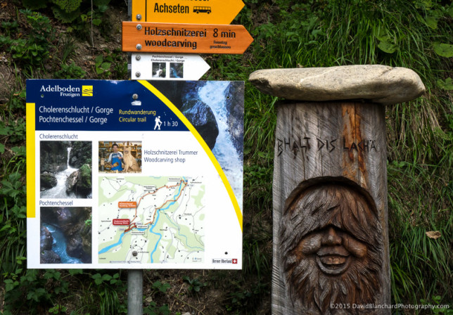 Trail guides and wood carvings along the way.