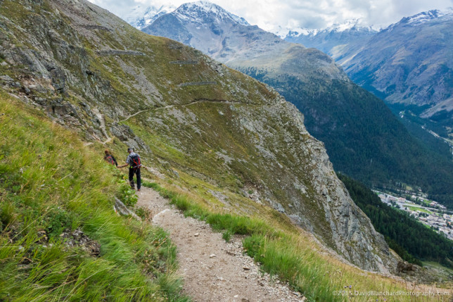 The trail from Chamanna Segantini to Alp Languard.
