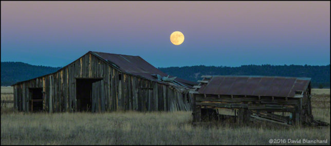 The full moon rises above an old barn in Garland Prairie, near Parks, Arizona.