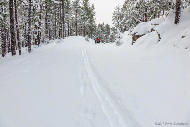 Ski tracks at Fort Tuthill.