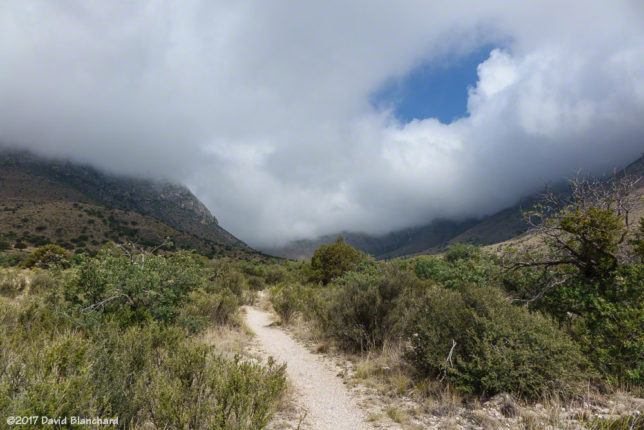 Clouds envelop the Guadalupe Mountains.