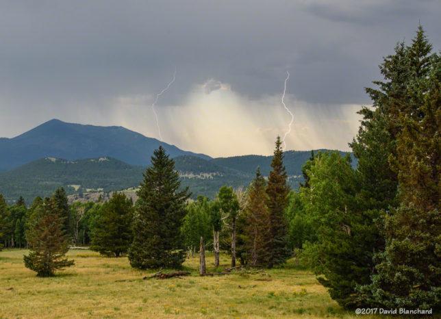 Lightning near Kendrick Peak in northern Arizona.