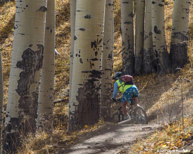 Mountain biking on Inner Basin Trail (10/17/2017)