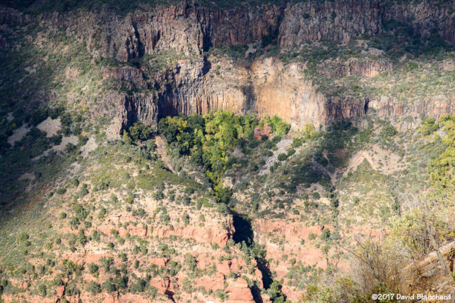 """The Waterfall"" rock climbing area in Oak Creek Canyon."