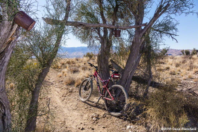 Rust Bucket Trail (and the rusty buckets) in Dead Horse Ranch State Park.