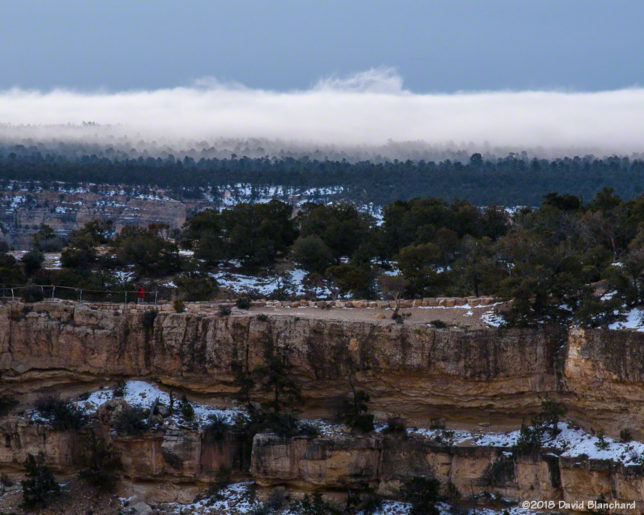 A zoomed-in view of the fog on the canyon rim.