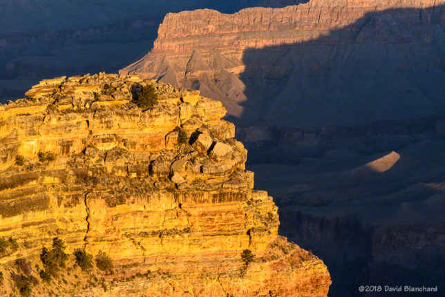 As the sun rose higher it illuminated the canyon below Hopi Point.