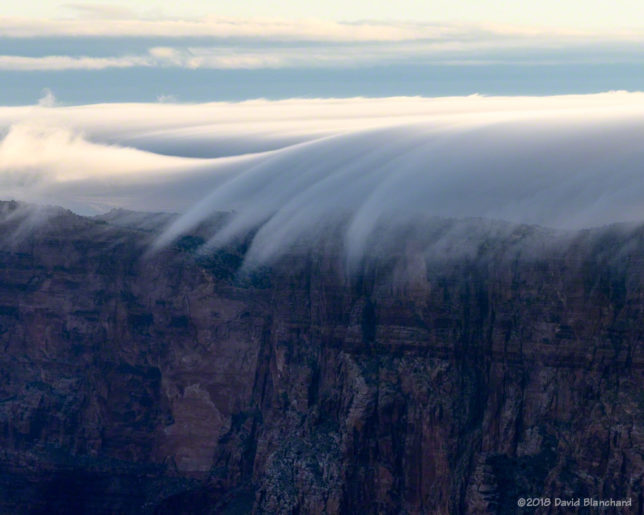 Fog spills over the rim into Grand Canyon.