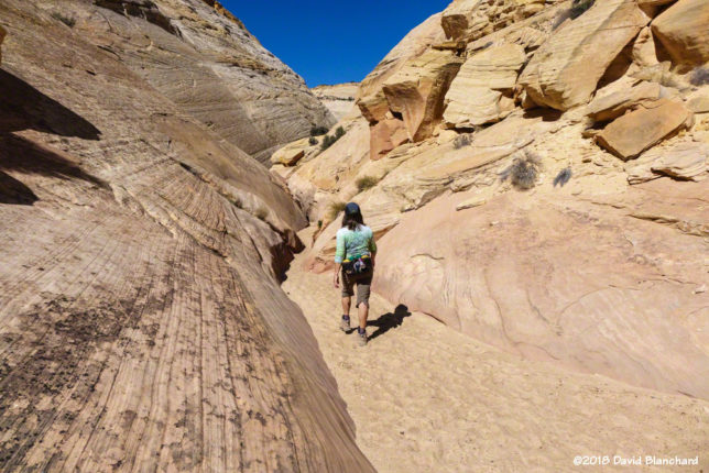 Approaching the first set of narrows in Burro Wash.