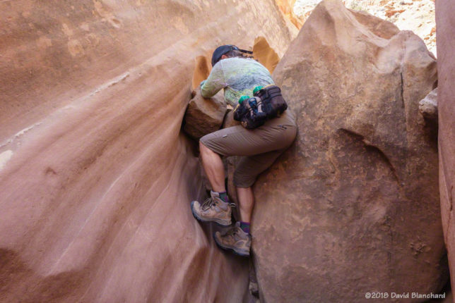 Some climbing moves are required to get past the chockstones in Burro Wash.