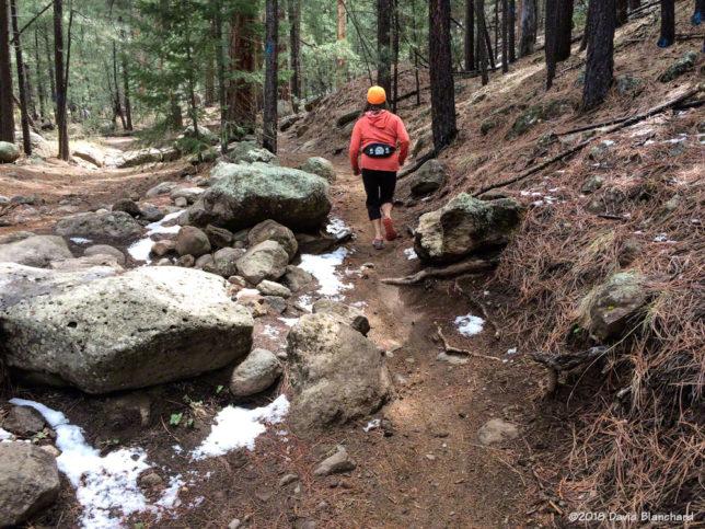 Trail run on Schultz Creek Trail.