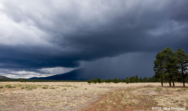 A thunderstorms envelopes the San Francisco Peaks.