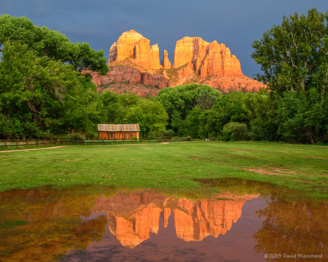 The setting sun illuminates Cathedral Rock which is reflected in a small pond.