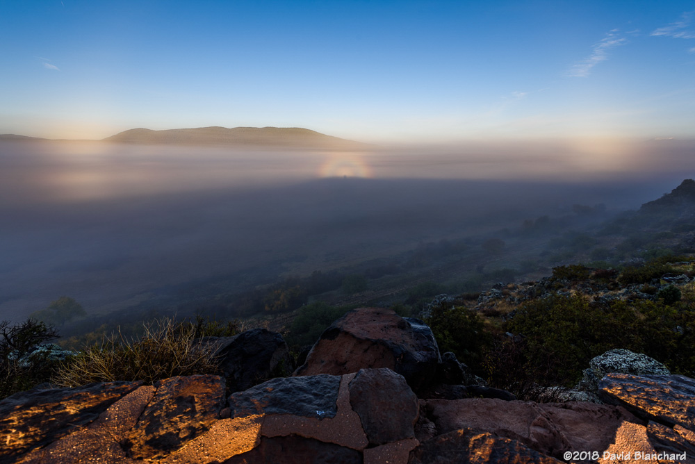 Fog with a Glory, Brocken spectre, and two segments of a fogbow.