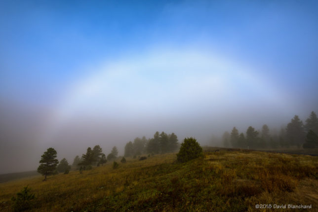 Fogbow near Lake Mary.