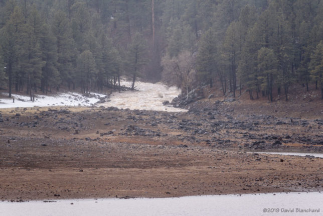 Newman Canyon, a normally dry wash, is filled with runoff pouring into Upper Lake Mary.