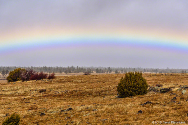 A winter rainbow in Flagstaff.