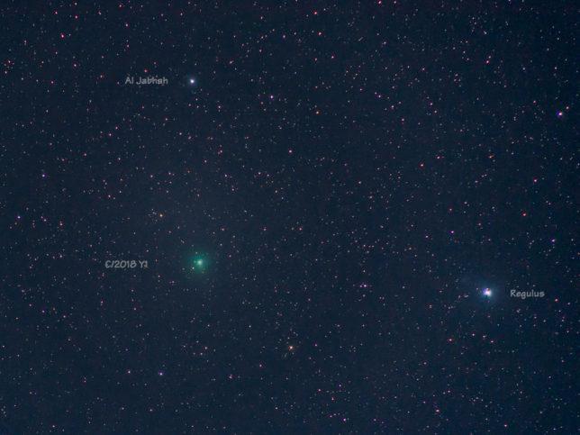 Comet C/2018 Y1 (Iwamoto).
