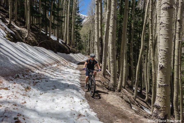 Mountain biking down the Waterline Road.