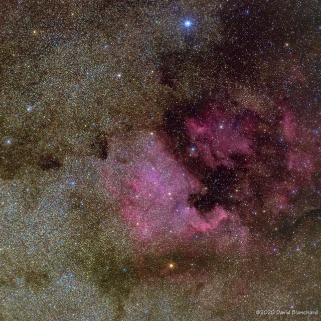 North America Nebula and Pelican Nebula