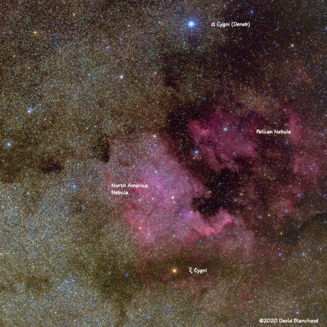 Annotated image of North America Nebula and Pelican Nebula