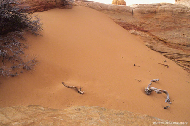 Drifted sand at Coyote Buttes.
