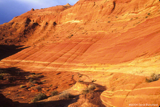 Late afternoon light illuminates the rocks on our hike out of Coyote Buttes.