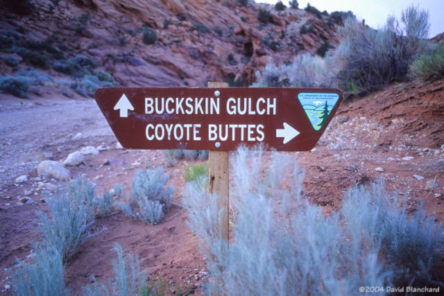 The old sign showing trails to Coyote Buttes and Buckskin Gulch.