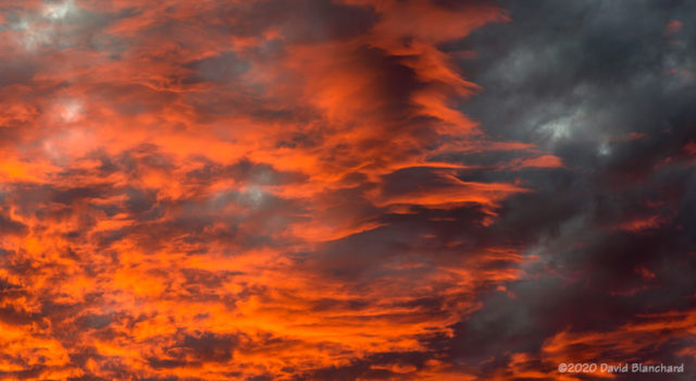 Sunset details.