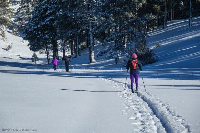Skiing down Skunk Canyon near Flagstaff.