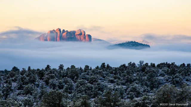 Fog and low clouds surround Cathedral Rock.