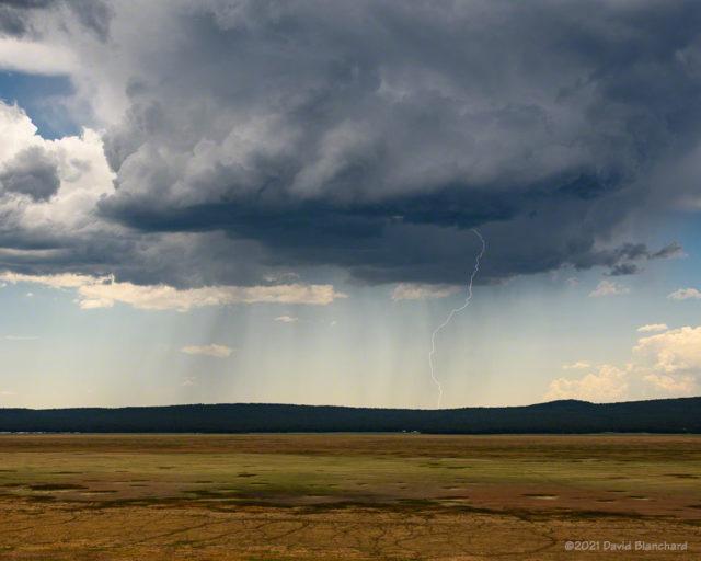 Mid-afternoon lightning near Mormon Lake.