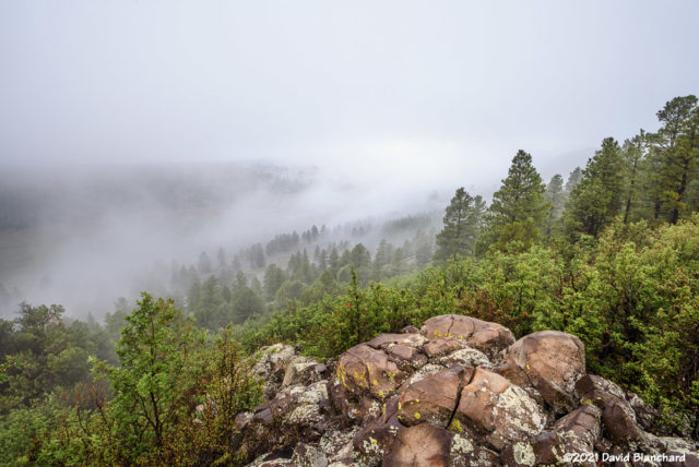 Fog draped across Lower Lake Mary.